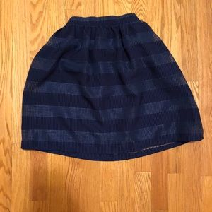 Blue Striped Skirt